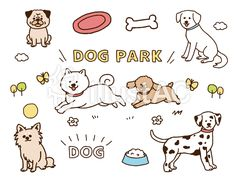Dog Park, Food Illustrations, Aesthetic Pictures, Snoopy, Comics, Cats, Animals, Fictional Characters, Aesthetic Images
