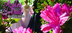 Can't wait to see the Azalea and Spring Flower Trail in Tyler, Texas this March and April