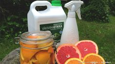 Vähennä myrkkyjä keittiössä Cleaning Supplies, Soap, Dishes, Drinks, Bottle, Diy, Drinking, Beverages, Bricolage