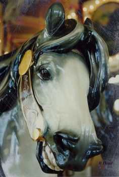 Carousel Horse - Hampton, Va.