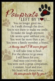 This is for ALL of my beloved 4 legged family members: past & present! I love & thank you all to bits & pieces!!!!