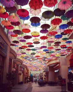 "169 mentions J'aime, 1 commentaires - Niya Photo 🌍📷 (@niyam1) sur Instagram: ""#dubaï #mall #umbrella #colorful #travel #photo"""