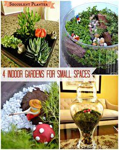 indoor gardens for small spaces, terrariums, succulent planter