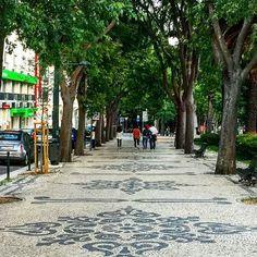 #walkways with #panache --- much less #bland & #boring than gray #concrete . #urbanlandscape #cityplanning #urbanplanning #cityscape #pedestrian #urbanpark #treelined #lisbon #lisbonlovers