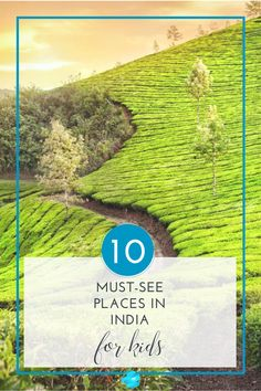 The 10 must-see places in India for kids: make your next family vacation amazing with these best things to do in India #india #kids #travel
