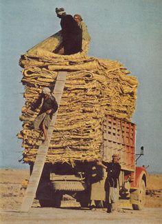 Iraq National Geographic April 1976 Nik Wheeler
