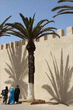 Les Palmiers d'Essaouira par Patrick Berthou