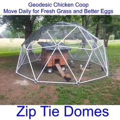 "We're using our dome with a mobile coop on wheels that we designed and built to keep seven chickens safe. We move the dome every week or two so  they can still have access to fresh ""greens"" every day. It's working great so far.  Thanks for the hubs!  -Mary and Caleb #greenhouseplanshomemade"