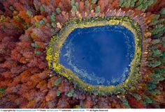 Polish autumn, Kacper Kowalski aerial photography