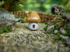Polymer clay  Miniature Fairy / Gnome House by MiniaturePeaces, $3.50