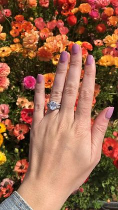 Find affordable engagement rings that will take your fiancée's breath away. Shop gorgeous engagement rings without breaking the bank. Nontraditional Engagement Rings, Colored Engagement Rings, Beautiful Engagement Rings, Black Women Hairstyles, Vintage Hairstyles, Hair Videos, Hairstyles Videos, Silver Rings, Wedding Rings