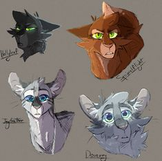 Some sketches by Acorn-Trees Warrior Cats Fan Art, Warrior Cats Series, Warrior Cats Books, Warrior Cat Drawings, Warrior Drawing, Cat Character, Character Design, Animal Drawings, Cool Drawings