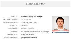 Resultado de imagen para descargar curriculum vitae