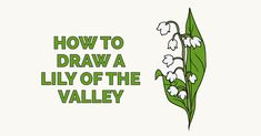 Learn to draw a beautiful lily of the valley. This step-by-step tutorial makes it easy. Kids and beginners alike can now draw a great looking lily of the valley.