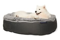 Pet Lounge Bean Bag - Ambient Lounge – dogghaus