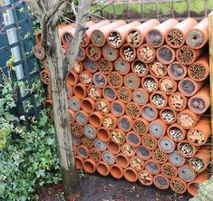 20 Recycled Gardening Ideas Spring decor is endless and simple to personalize. Such a decoration provides the outhouse an authentic appearance. Bug Hotel, Mason Bees, Garden Insects, Save The Bees, Bee Keeping, Garden Projects, Garden Inspiration, Bird Feeders, Garden Design