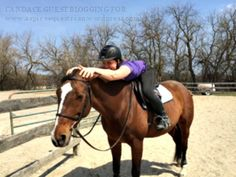 http://aspireequestrian.wordpress.com/2014/09/02/candace-an-amateur-riders-struggles-with-fitting-full-time-job-studying-for-second-degree-as-an-adult-shows-training-horse-time/