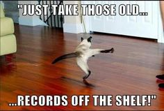 I like that Old Time Rock & Roll #BobSeger #Musichumor Hahaha