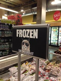 Grumpy Cat in Whole Foods... Where will we see her next?!