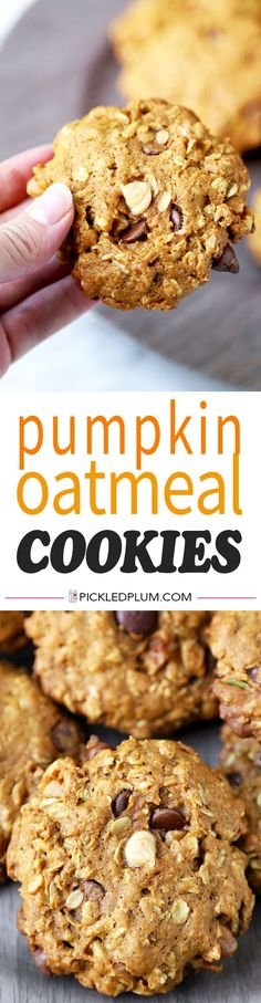 Pumpkin Oatmeal Cookies - These healthier Pumpkin Oatmeal Cookies are one part gooey oatmeal chocolate chip cookie, one part pumpkin pie. Ready in 25 minutes from start to finish! Recipe, snack, dessert, cookies, chocolate chip, nuts, galette | pickledplu