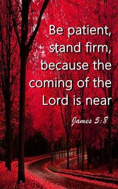 JAMES Yes come Lord Jesus! Study the words of God and see what God speaks on a daily basis in the God Speaks Bible. Bible Verses Quotes, Bible Scriptures, Faith Quotes, Healing Scriptures, Biblical Quotes, Heart Quotes, Christian Life, Christian Quotes, Christian Church