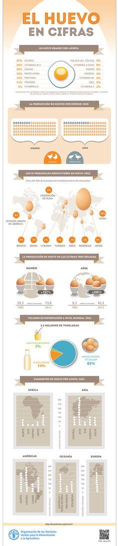 El huevo en cifras