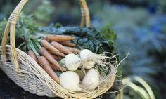 Planificar la cosecha en macetas para final de primavera