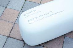 kashiwanoha_3.jpg