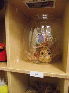 In the kindergarten pet store center, this fish takes up residence in an old pretzel container.