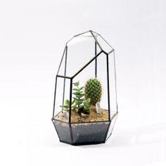 Quartz Terrarium -$140