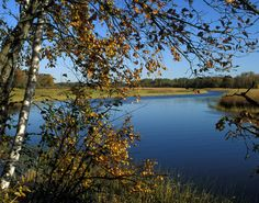DP54  Mississippi River www.phawkinsphoto.com Peter Hawkins©1992