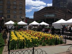 We're at #CopleySquare Farmers' Market every Tuesday from 11-6!