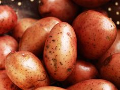 Best Potato Salad - on HGTV