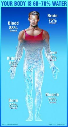 Your Body's Best Fuel is Water #AlkalineWater #IonizedWater #Healthy #Water #HealthBenefit #Antioxidants #Hydration