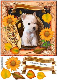 Autumn Wishes Happy Birthday 8X8 CF on Craftsuprint designed by Maria Christina Vieira  - Autumn Wishes Happy Birthday 8X8 CF,Approx.8x8 Card Front .This is a cute terrier Autumn Birthday card front with Sunflowers,Corn,and Autumn leaves including a very cute puppy in a basket.There is a blank banner included in this sheet for your own text.Sentiment banners:Autumn Wishes