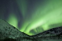 The Aurora Borealis, the spectacular Northern Lights fill the sky with dazzling green light above Kvaloya island at Tromso in the Arctic Circle in Northern Norway in March 2012.    (Photo: Tim Graham / Getty Images)