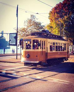 Im Bann von Porto - ein kleiner aber feiner Besuchsguide