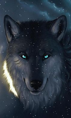 Best Of Wolf Screen Wallpaper For Laptops And Smartphones
