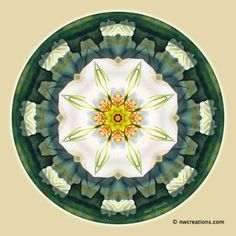 Eckhart Tolle quote and Mandalas for a New Earth, No. 5 http://go.shr.lc/1ps0OsN -  © Atmara Rebecca Cloe and New World Creations -  Purchase prints and gifts at http://www.zazzle.com/New_World_Creations?rf=238526469533245868