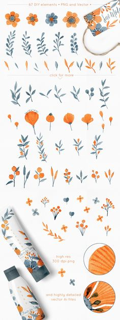 Floral Graphics Set - Fleur d'orange - Illustrations - 3