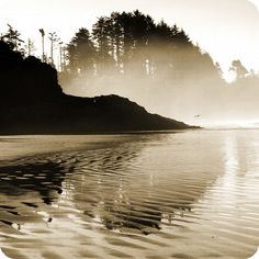 Tofino, Chesterman Beach sunrise, B. Beautiful Places To Visit, Places To See, West Coast Canada, Canada Travel, Canada Trip, Vancouver Island, Landscape Photography, Landscape Photos, Places Around The World