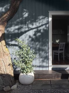 Drømmehytta på Hvaler har en perfekt terrasse! Outdoor Spaces, Indoor Outdoor, Jotun Lady, Windsurfing, Cozy Cottage, Exterior Colors, Mineral, Supreme, Home And Family