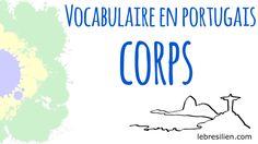 Vocabulaire Portugais Brésilien - Corps