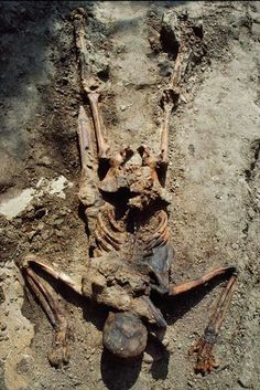 Skeleton found in Herculaneum