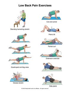 Low Back Pain Exercises. Please note, these exercises are intended only as suggestions. Ask your provider or physical therapist to help you develop an exercise program. Check with your provider before starting the exercises. Ask your provider how many times a week you need to do the exercises. back exercises, pain exercis, stretches for lower back pain, back injury exercises, how to help lower back pain, breaki bodi, back stretches low back pain, lower back pain stretches, core exercises
