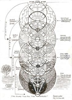 The Tree of Life - Jacobs Ladder