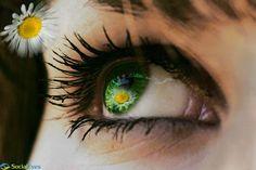 Beautiful eye! #flower #optometry
