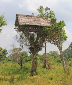 Tree Tops Jungle Lodge in southeast Sri Lanka: a tented eco-lodge deep in the Yala National Park, where you may see elephants! i-escape.com