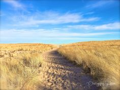 """Pochet Beach"" -Photography by Jenna De Los Santos  #capecod #photography #sand #beach #dunes #blueskies #footprints #bythesea #art"
