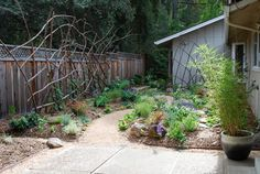 JW Garden - eclectic - landscape - san francisco - Steve Masley Consulting and Design